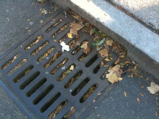 With fall here the tree leaves are starting to fall and will ultimately cause your storm drains to clog and the streets to flood unless they are routinely cleaned out […]
