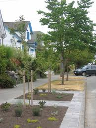 Studies have shown that neighborhoods with more trees have higher property values, neighborhood interaction, and lower crime rates. University Park has many planting strip trees, but there could be many […]